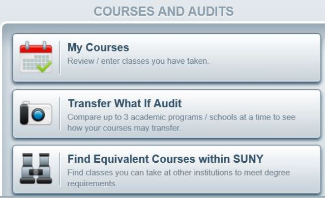 Courses and Audits interface